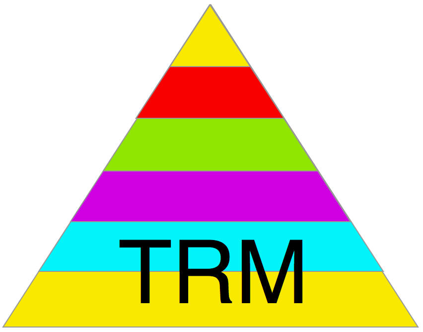 TRM diagram - white with text large@2x